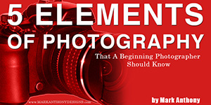 5 elements of photography image